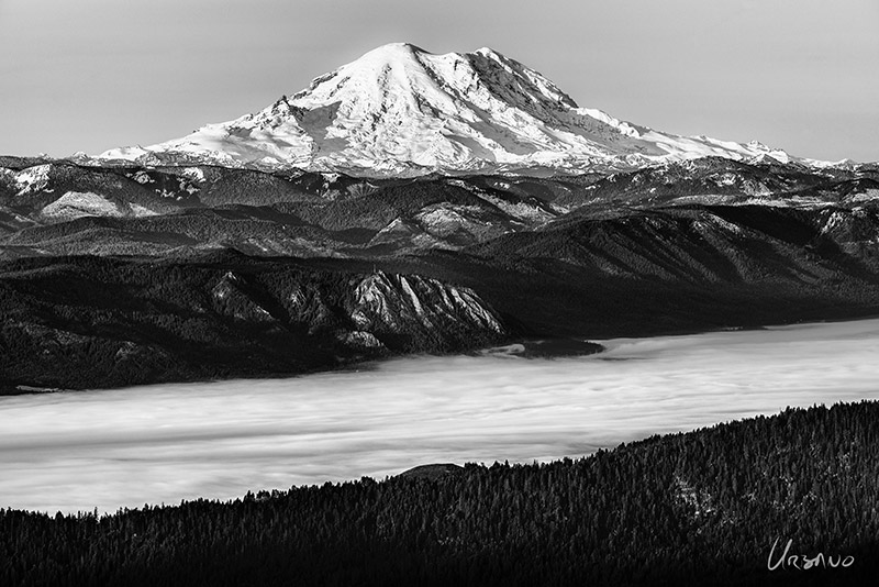 """Mt. Rainier"" An unusual view from the north. Great detail and contrast on this clear October morning in this black and white image of Washington State's tallest mountain. Copyright 2013 - Dominic Urbano"